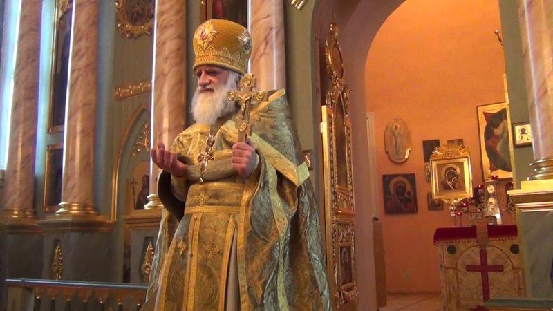 Неделя 29 я по Пятидесятнице Преподобного Саввы Сторожевского Звенигородского