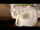 20.09.2018 Задержаны граждане Ближнего зарубежья в обороте наркотиков