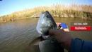 ДА сколько здесь ЖЕРЕХА в этой ПРОТОКЕ Рыбалка на спиннинг АСТРАХАНЬ ч 2