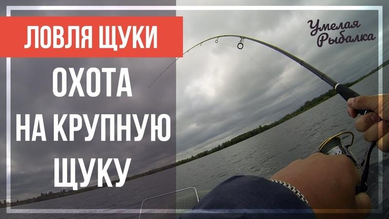Ловля щуки НА ВЕРТУШКИ. Рыбалка в июле НА СПИННИНГ с лодки