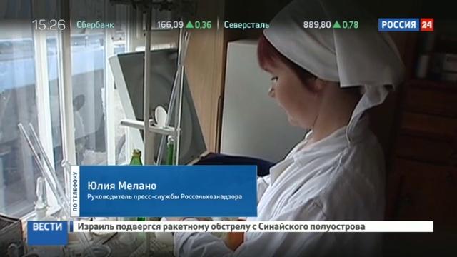 Новости на Россия 24 • Испытание огнем: на смену зажигательному творожку пришел пластиковый сыр