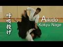 Aikido seminar in Monaco - Kokyu Nage 04