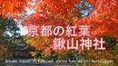 京都の紅葉 鍬山神社 京都府亀岡市 2018 Autumn leaves in Kuwayama shrine Kameoka shi Kyoto Japan