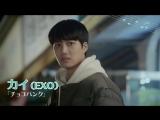 カイ(EXO)からコメントが到着!「アンダンテ~恋する速度~」DVD発売!
