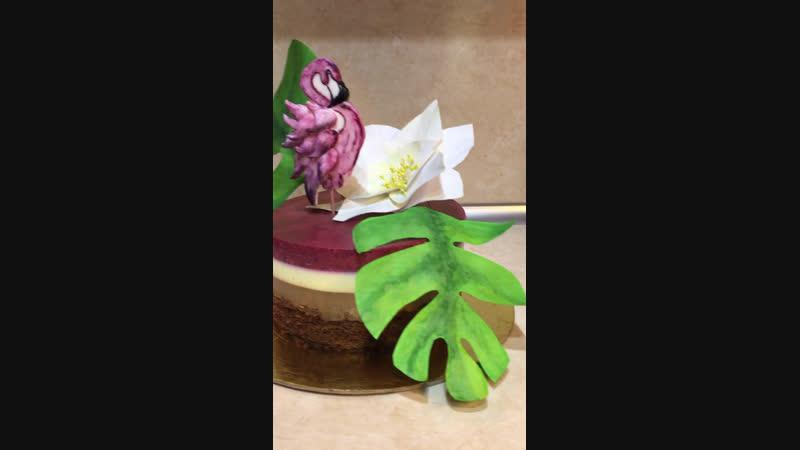 Муссовый торт с фламинго