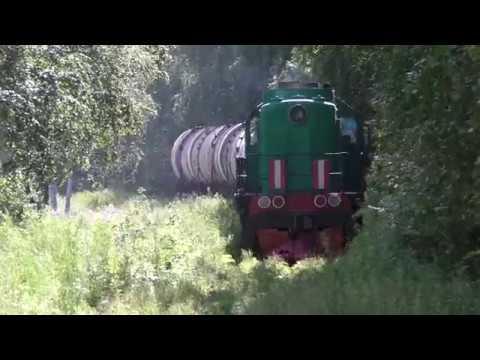 Тепловоз ТЭМ2 несется с цистернами железная дорога цистерны locomotive railways rail road