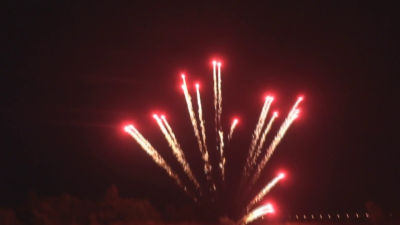Fireworks for my birthday 2 to 4 inch shells and lines 16мм