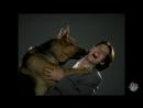 Культура 2000х - Панин смотрит Комиссара Рекса