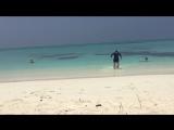 о. Фуладу, Мальдивы 05.04.2018 - 15.04.2018
