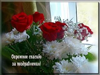 https://pp.userapi.com/c847124/v847124842/c48f8/fgo7L5RsDNM.jpg