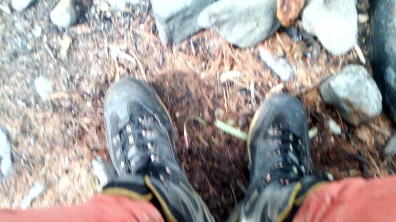 кросы