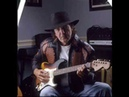 Tony Joe White Bayou Blues