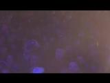 _БЕЛЫЙ_ПОЛЯРНЫЙ_ВОЛК__Игорь_Корнилов_(муз.И.Корнилов,сл.Г.Витке)LIVE_360P.mp4