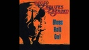 Mojo Blues Band - I Stay Mad (feat