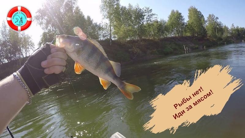 Авантюрная рыбалка на р. Мокша. (Мордовия)