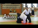 Aikido - Shirakawa Ryuji shinan 【All Tohoku Aikido Demonstration 2018 】