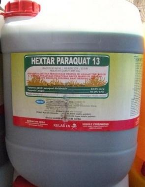Что такое отравление паракватом?
