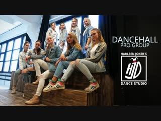 CALVIN HARRIS x NORMANI feat. WIZKID - CHECKLIST | DANCEHALL PRO | HARLEEN JOKER'S DANCE STUDIO