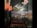 Лайфхак! Стекла и зеркала без разводов Салфетка Aquamagic от Greenway. 89281444303