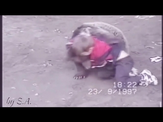Khabib nurmagomedov vs. bear [nr]
