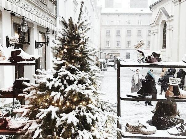 Фото №456334311 со страницы Светланы Густилевой
