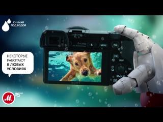 Топ-10 звездных камер