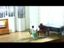 Мария Блажевич и уфимский клавесин