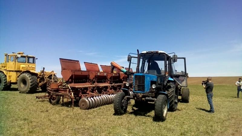 Заправка пшеницей