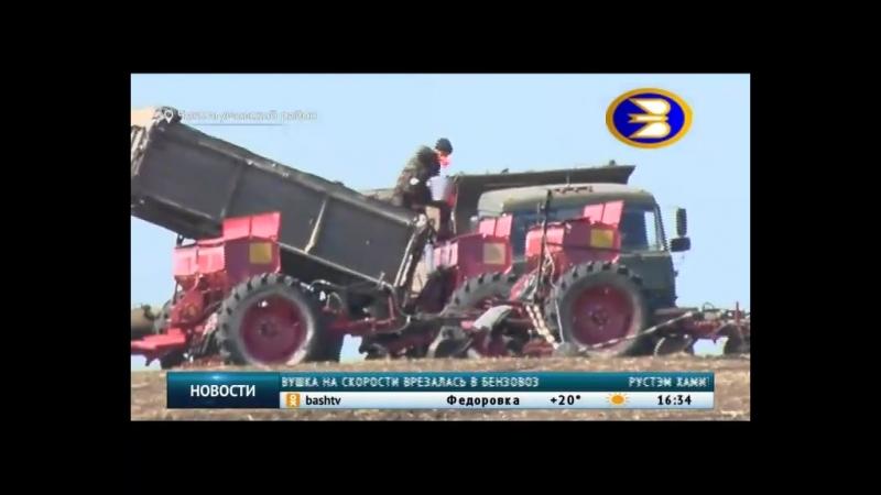 В Чекмагушевском районе аграрии засеяли больше половины полей