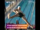 Соревнования по прыжкам в воду вперёд животом