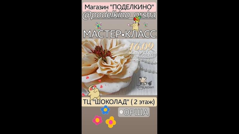 VID_138461001_015013_772.mp4