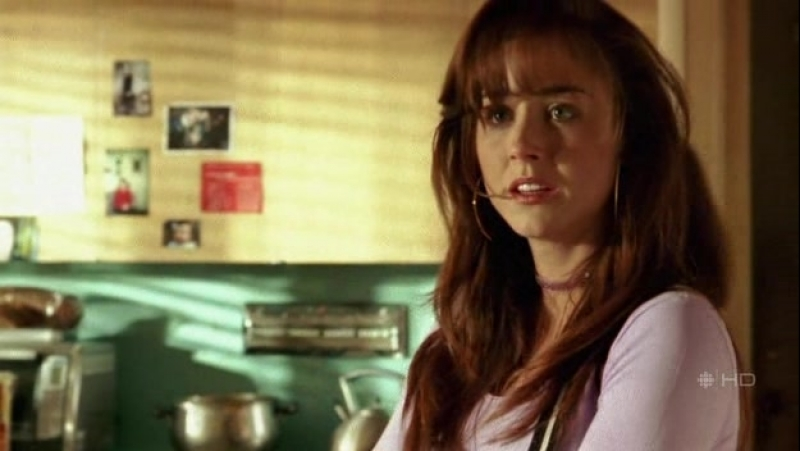 Being.Erica.S01E01.HDTV.XviD-MiNT
