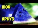 Синий арбуз с алиэкспресс