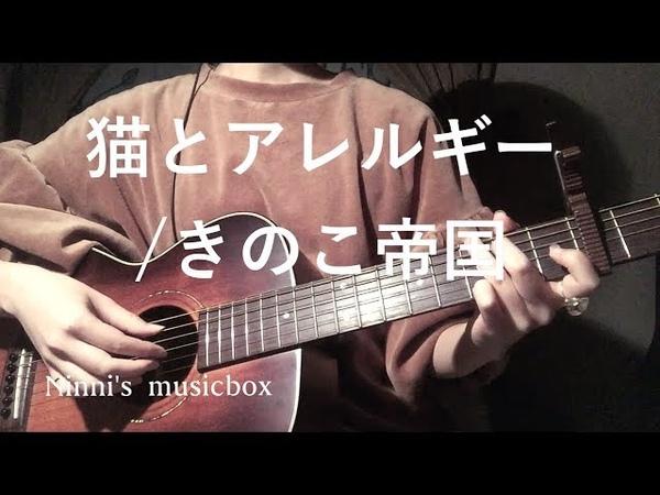 猫とアレルギー/きのこ帝国【歌詞付き】(多重録音cover)