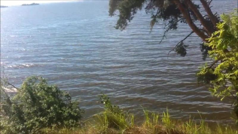 рыбалка в устье реки Нёмда 07.18 КостромскаяИвановская обл.