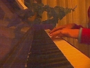 VideoSeq-03.23.2014--20.53.05