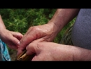 Жемчужина из реки Ока 2