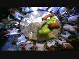 WC - Cheddar (feat. Mack 10)