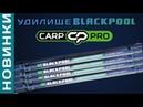 Фидерное удилище Carp Pro Blackpool Method Feeder 2018 Обзор от Flagman TV