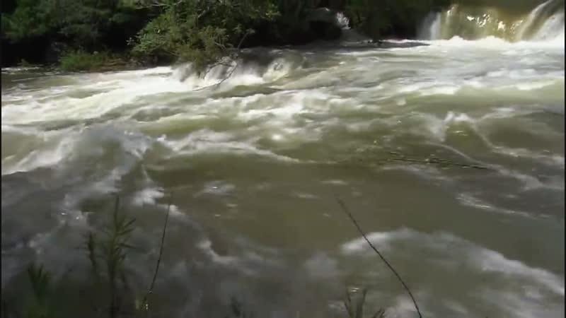 Амазонка Амазония реки солнца Документальный фильм HD качество
