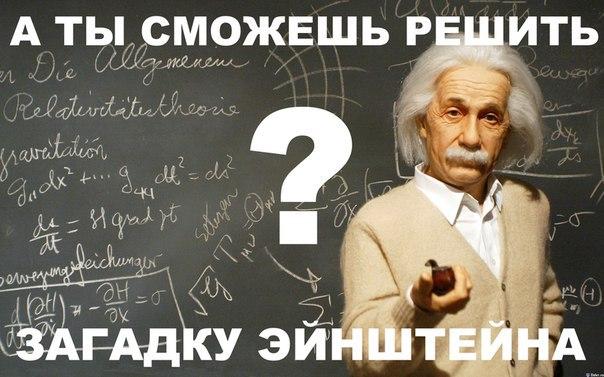 загадка эйнштейна, которую смогут отгадать 2% населения планеты это загадка от одного из умнейших людей, когда-либо живших на земле, альберта эйнштейна. более того, считается, что он придумал