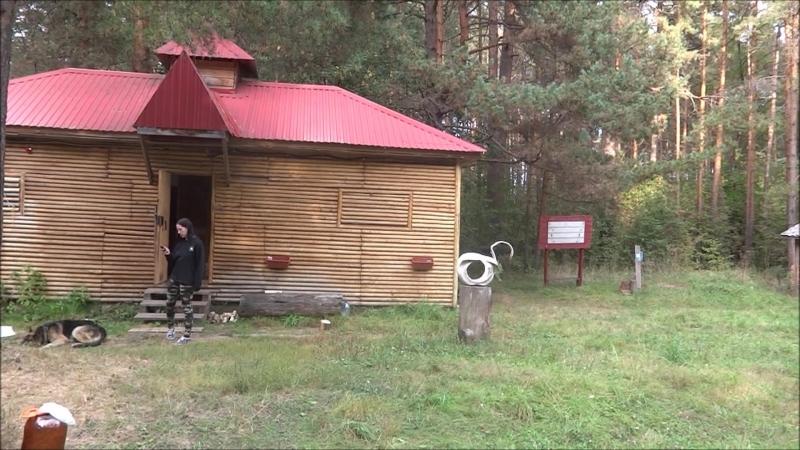 База отдыха в лесу в районе Среднего посёлка