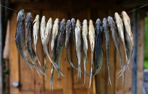 К чему снится сушеная рыба: различные предзнаменования