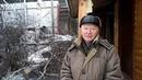 отзыв удаление 3 х берез в СНТ поселке Гать Екатеринбург Свердловская область