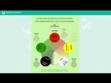 Здоровье человека с точки зрения Восточной медицины. Пыльца сосны - основа Здоровья!