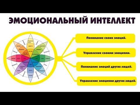 Эмоциональный интеллект, эффективное общение и достижение взаимопонимания