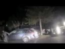 В Калифорнии медведь залез в машину и заперся изнутри. Полиции пришлось разбить окно, чтобы горе-угонщик смог выбраться. Самый