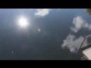 Огромные сомы реки Припять