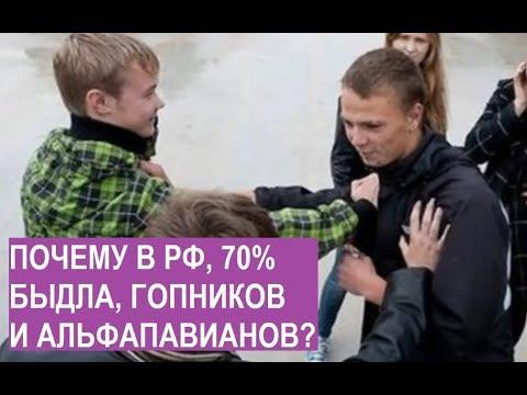 Почему в РФ 70% быдла , гопников и альфабабуинов? и как они хотели снести мне голову в школе..