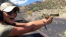 Beautiful Girls Shooting the Golden Desert Eagle 50AE!